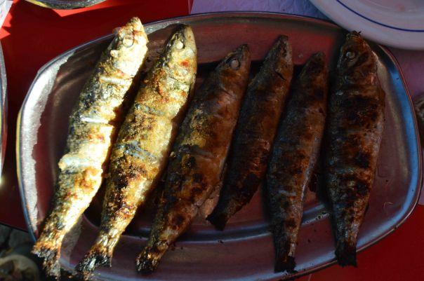Sardines.1
