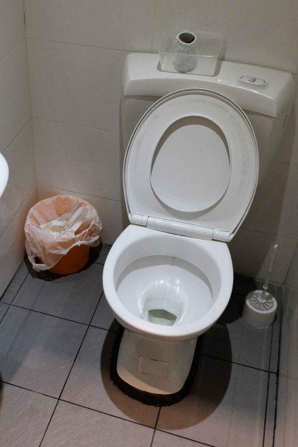 toilet closer